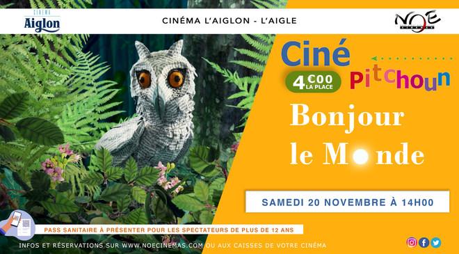 CINE PITCHOUN présente BONJOUR LE MONDE